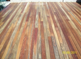 Spotted Gum 86x19 Oiled