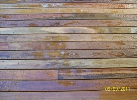 Spotted Gum Oiled with Lanotec