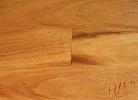 Blackbutt T&G Flooring 80 x 19 Select